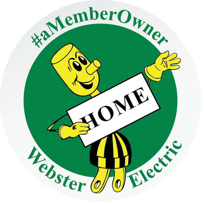 Webster Electric