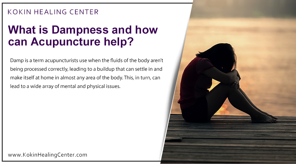 What is Dampness and how can Acupuncture help?