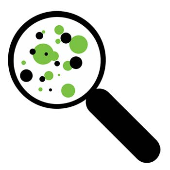 mold inspection icon