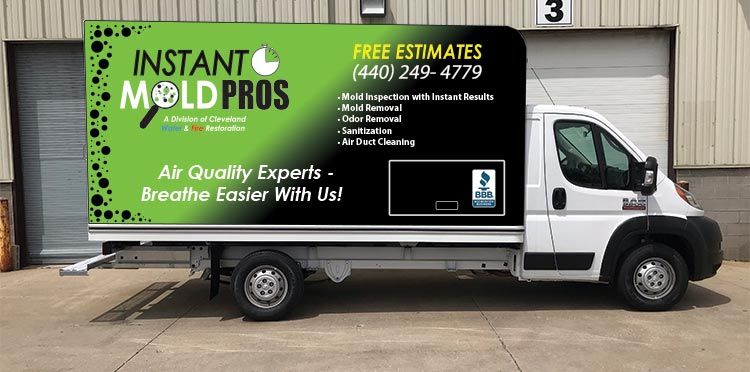 Instant Mold Pros box truck
