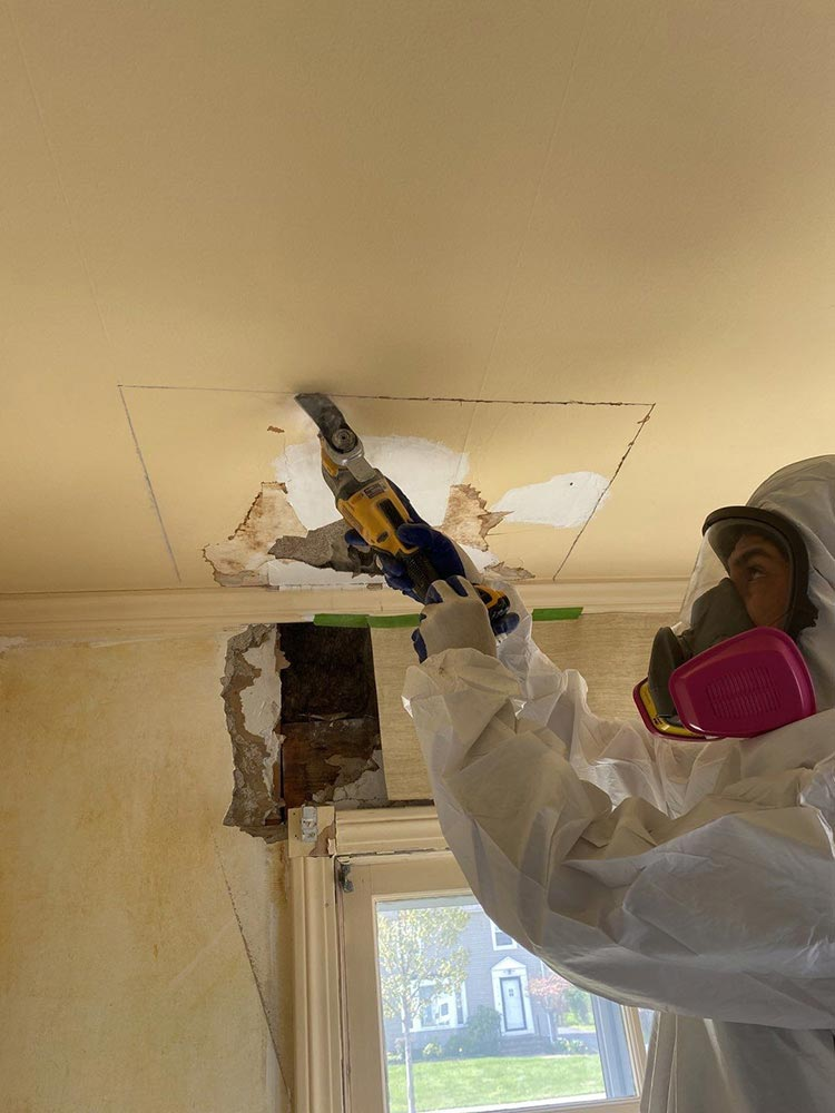 mold removal in beachwood 2
