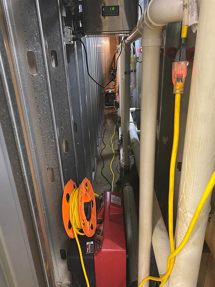 mold removal in Strongsville