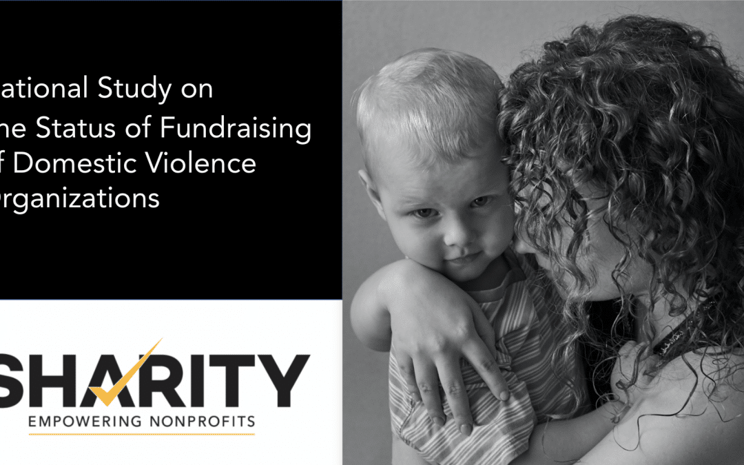 Presentation: National Study on the Status of Fundraising for Domestic Violence Organizations