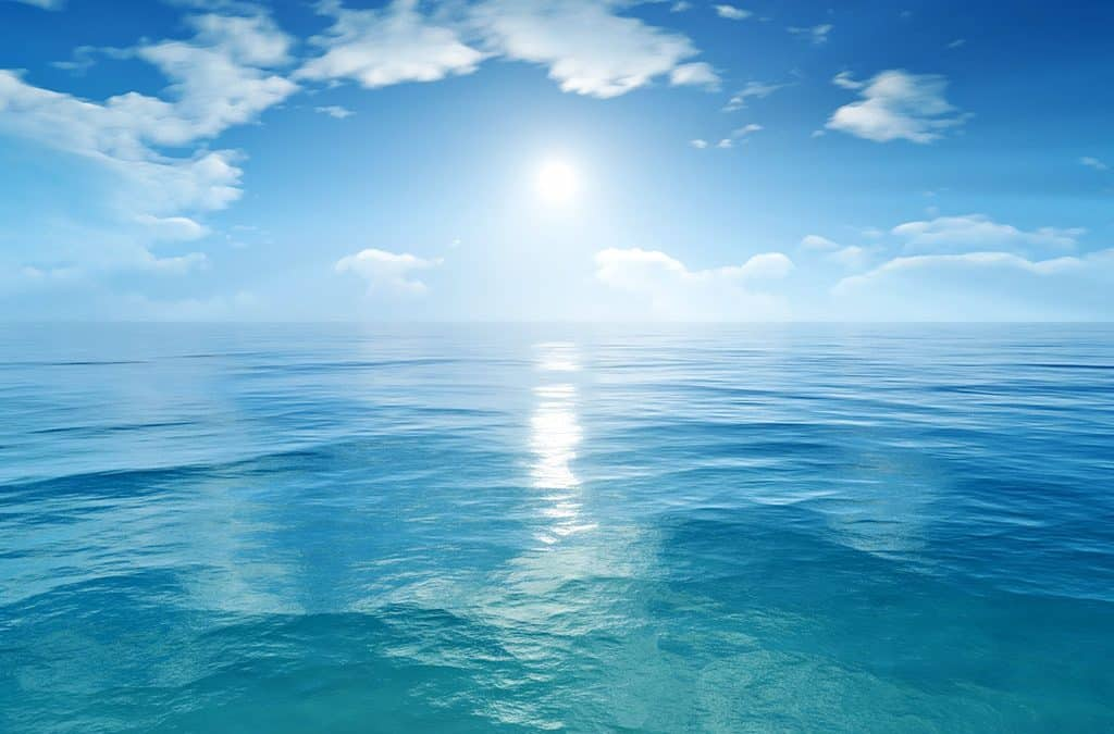 Fuel Organic Growth by Finding the Blue Ocean