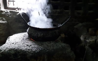 The State of the Real Estate Market: A Boiling Cauldron