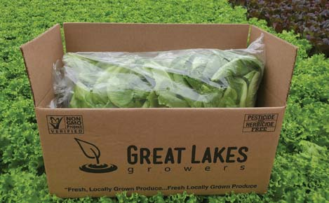 Great Lakes Growers Fresh Cut Baby Romaine