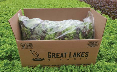 Great Lakes Growers Fresh Cut Garden Blend