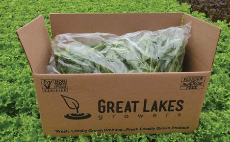 Great Lakes Growers Fresh Cut Spinach